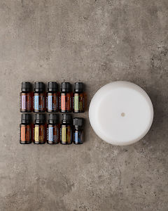 doTERRA Home Essentials Enrolment KIt on a gray stone background with a flexible layout to allow text.