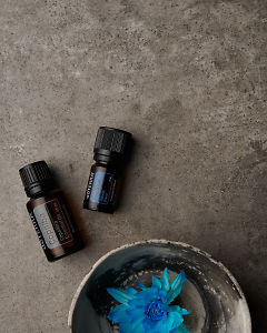 doTERRA Copaiba and Ice Blue with a blue flower in a bowl on a gray stone background.