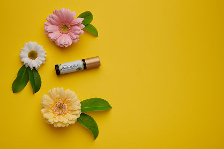 doTERRA Immortelle with flowers and green leaves on a yellow card stock background.