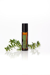 doTERRA Tea Tree Touch with leaves on a white background with reflection.