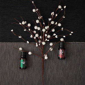 doTERRA Holiday Peace and Holiday Joy with holiday decorations on a dark gray and medium gray textured background.