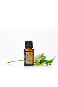 doTERRA Copaiba with leaves on a white background with reflection.