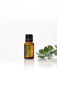 doTERRA Basil with leaves on a white background with reflection.