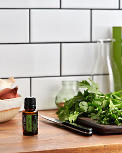 doTERRA Cilantro on a kitchen bench with freshly cut cilantro/coriander.