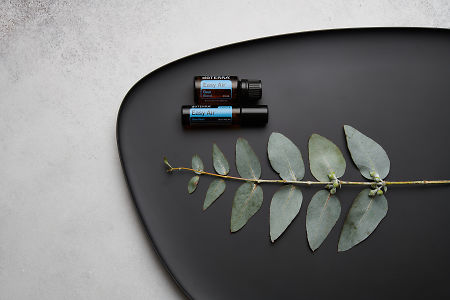 doTERRA Easy Air, Easy Air Touch and eucalyptus leaves on black melamine plate with white concrete background.