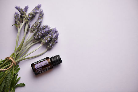 doTERRA Lavender Peace and lavender stems tied with twine on pale purple background.