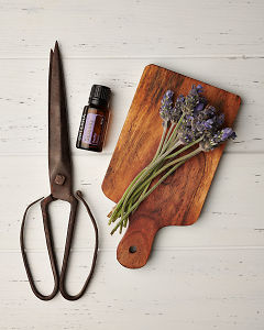 doTERRA Serenity with lavender flowers on a wooden board with vintage scissors on a white wooden background.