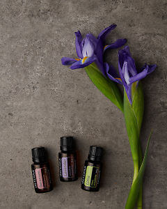 doTERRA Geranium, Lavender and Lime with purple flowers on a gray stone background.