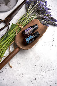doTERRA Lavender and Peppermint in a wooden scoop with a ceramic plate and lavender flowers tied with twine on a white concrete background.