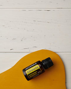 doTERRA Citronella on a yellow wooden plate on a white wooden background.