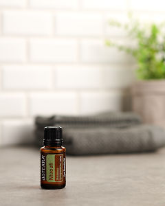 doTERRA Nialoui sitting on a gray stone bench