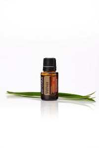doTERRA Vetiver with leaves on a white background with reflection.