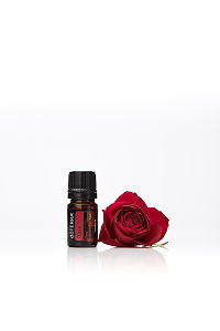 doTERRA Rose with a red rose on a white background with reflection.