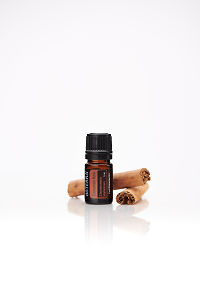 doTERRA Cinnamon with cinnamon bark on a white background with reflection.