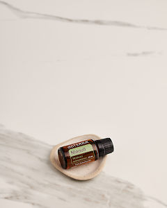 doTERRA Niaouli in a small ceramic dish on a white marble background.