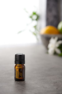 doTERRA Kumquat on a bench in a rustic setting near a window.