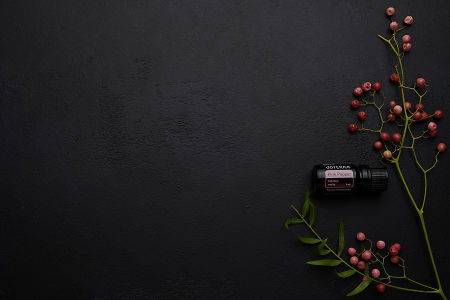doTERRA Pink Pepper and pink peppercorn branch on a black concrete background.