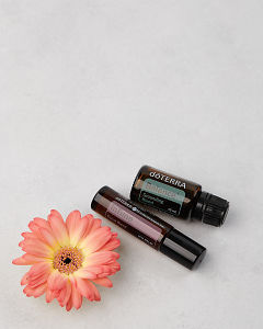 doTERRA InTune 10ml and doTERRA Balance 15ml with a peach colored Gerbera on concrete.