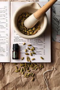 doTERRA Cardamon on a vintage botany book with dried cardamon seed pods in a mortar and pestle and vintage cardamon illustrations.