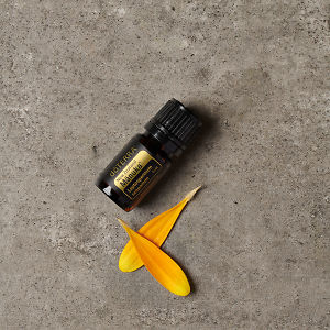 doTERRA Manuka essential oil and flower petals on a grey stone background.