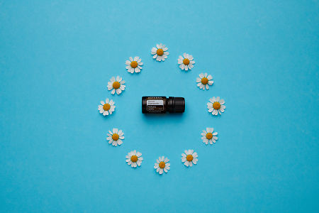 doTERRA Roman Chamomile in a circle of chamomile flowers on a blue card stock background.