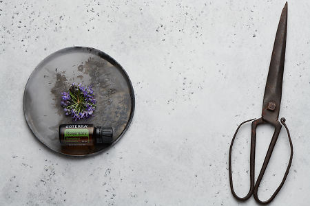 doTERRA Rosemary with rosemary flowers on a ceramic plate with rustic scissors on a white concrete background.