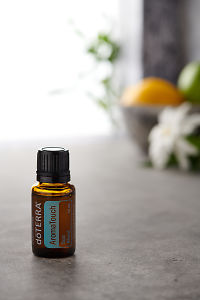 doTERRA AromaTouch on a bench in a rustic setting near a window.
