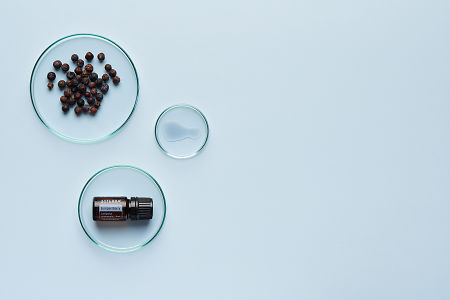 doTERRA Juniper Berry in a petrie dish with juniper berries and oil in petrie dishes on a pale blue background.