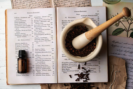 doTERRA Clove on a vintage botany book with clove buds in a mortar and pestle and vintage clove illustrations.
