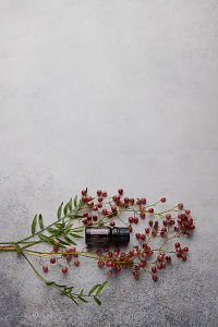 doTERRA Pink Pepper and pink peppercorn branch on a white concrete background.