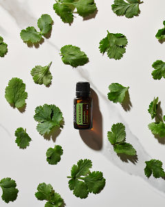 doTERRA Coriander essential oil and coriander leaves in direct  sunlight on a white marble background.