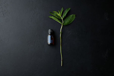 doTERRA Peppermint with a mint branch on a black stone background.