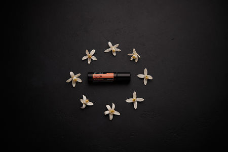 doTERRA Neroli Touch circled by orange blossoms on a black concrete background.