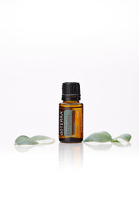 doTERRA Eucalyptus with eucalyptus leaves on a white background with reflection.