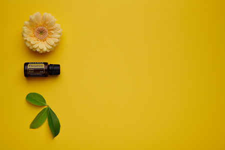doTERRA Elevation with a yellow flower and green leaves on a yellow card stock background.