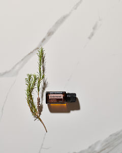 doTERRA Cedarwood essential oil and a plant stem lying on white marble in the sun.