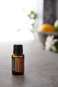 doTERRA Vetiver on a bench in a rustic setting near a window.