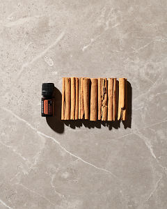 doTERRA Cinnamon Bark essential oil and cinnamon sticks on a grey tile in the sun.