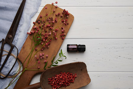 doTERRA Pink Pepper, pink peppercorn branch and  peppercorns in a scoop with vintage utensils on a white wooden background.