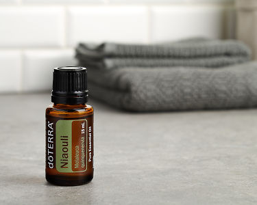 doTERRA Nialoui in close up on a gray stone bench