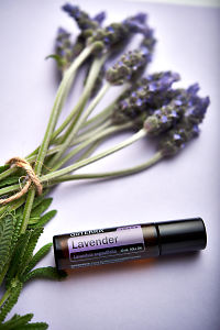 doTERRA Lavender Touch and lavender stems tied with twine on pale purple background.