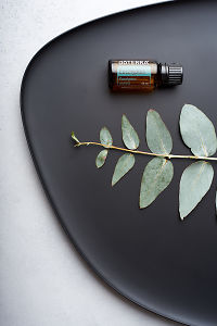doTERRA Eucapyptus and eucalyptus leaves on black melamine plate with white concrete background.
