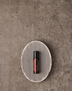doTERRA On Guard Beadlet in a soapdish on a gray stone background.