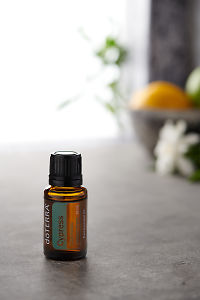 doTERRA Cypress on a bench in a rustic setting near a window.