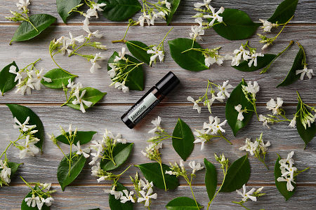 doTERRA Jasmine Touch surrounded by jasmine flowers on a faded wooden background.